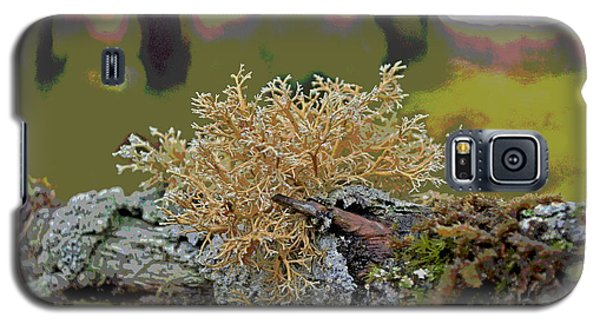 Posterized Antler Lichen Galaxy S5 Case by Cathy Mahnke