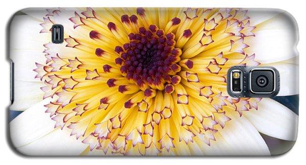 Pot Marigold Citrus Smoothies Galaxy S5 Case