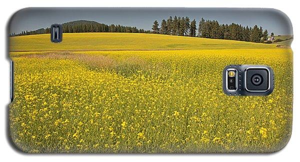 Potlatch Canola Galaxy S5 Case