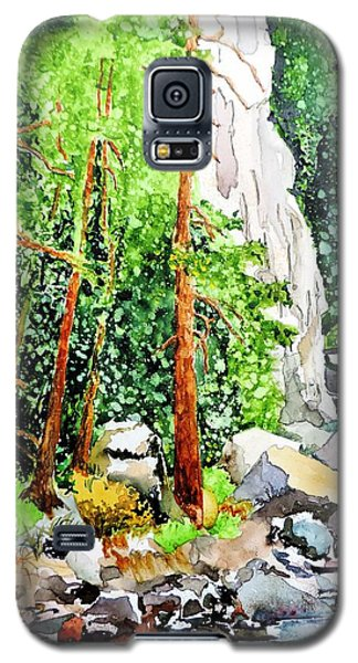 Galaxy S5 Case featuring the painting Poudre Canyon Beauty by Tom Riggs