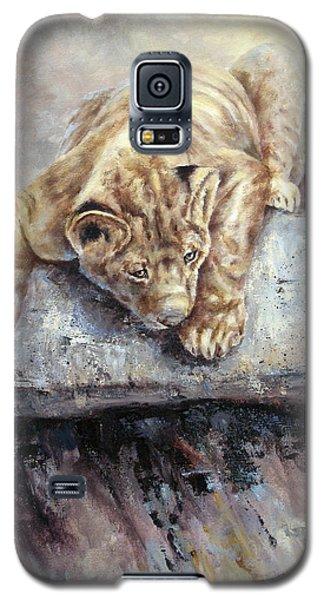 Pounce Galaxy S5 Case