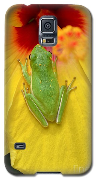 Powdered Frog  Galaxy S5 Case