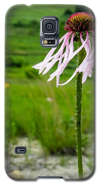 Galaxy S5 Case featuring the photograph Prairie Breeze by Beverly Parks