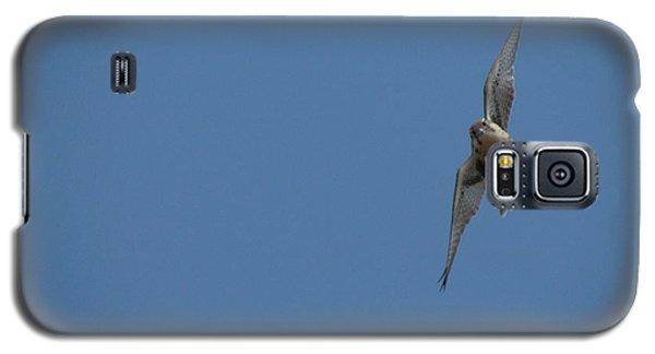 Prairie Diver Galaxy S5 Case