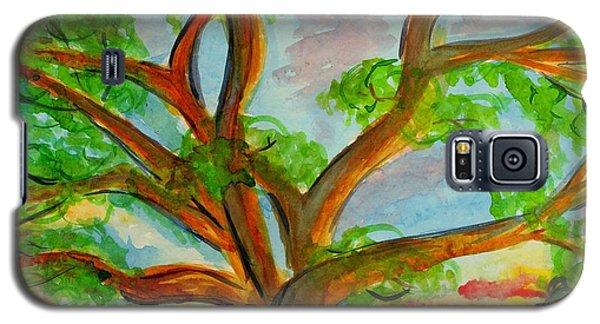 Prayer Mountain Tree Galaxy S5 Case