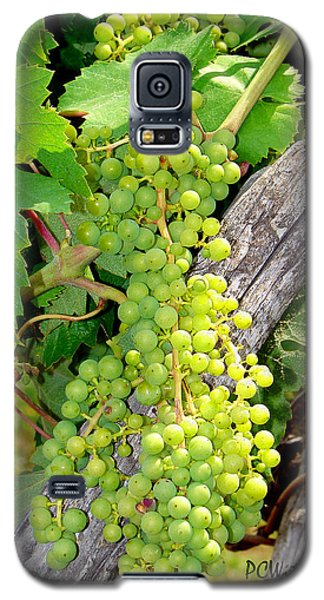 Pre-vino Galaxy S5 Case by Patrick Witz