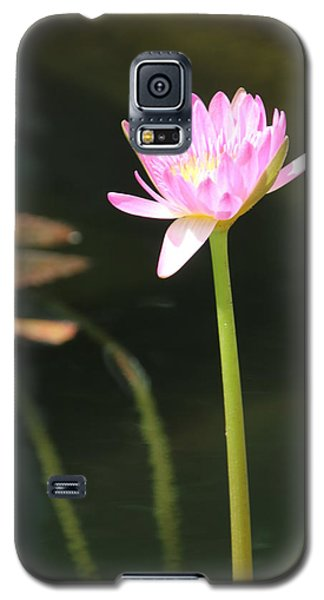 Precious Purple Water Lilly Galaxy S5 Case by Bill Woodstock