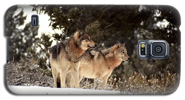 Galaxy S5 Case featuring the photograph Predators by Sharon Elliott