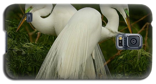 Galaxy S5 Case featuring the photograph Preening Pair by Myrna Bradshaw