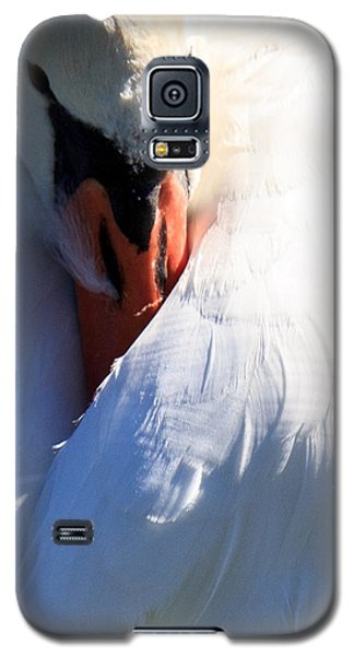 Galaxy S5 Case featuring the photograph Preening Swan by Cathy Donohoue