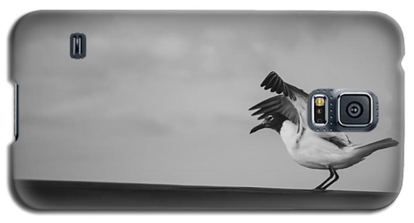 Preflight Galaxy S5 Case