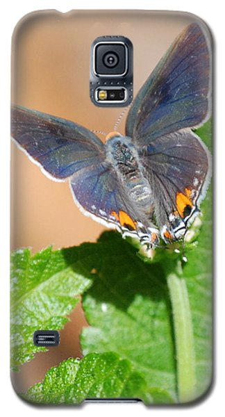 Galaxy S5 Case featuring the photograph Pretty As A Flower by Kathy Gibbons