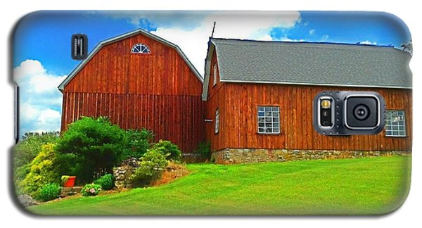 Pretty Barn And Arch Window Galaxy S5 Case by Becky Lupe