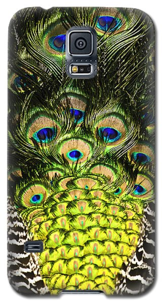 Pretty Boy Blue Galaxy S5 Case