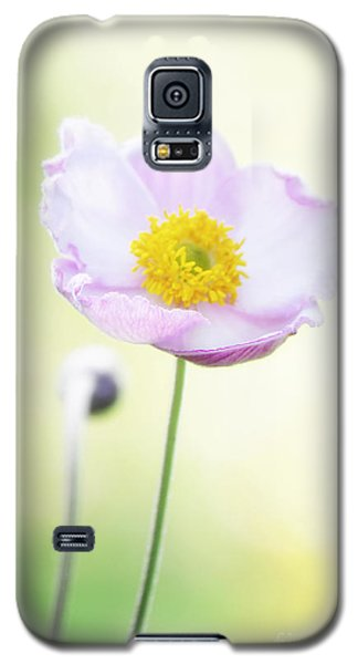 Pretty Flower  Galaxy S5 Case