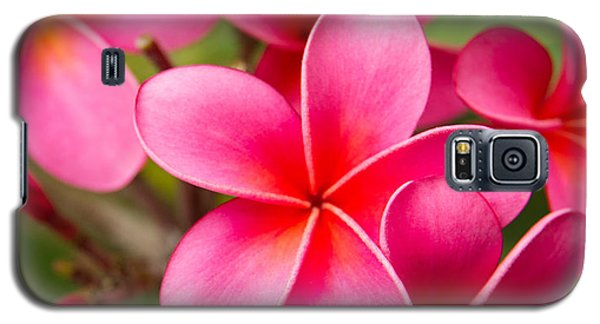 Pretty Hot In Pink Galaxy S5 Case