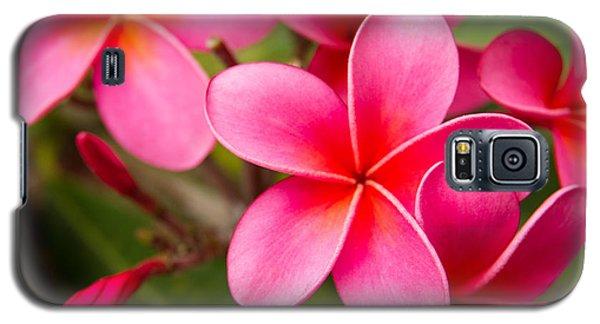Pretty Hot In Pink Galaxy S5 Case