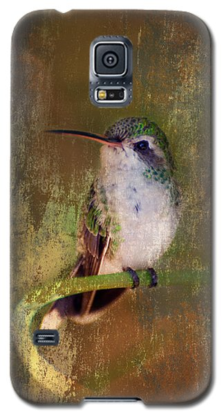 Pretty Hummer Galaxy S5 Case