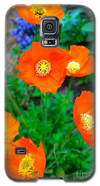 Pretty In Orange Galaxy S5 Case