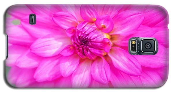 Pretty In Pink Dahlia Galaxy S5 Case