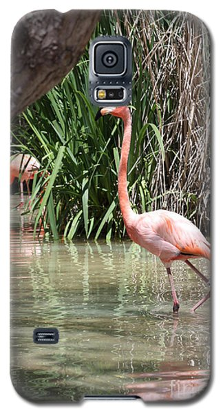 Galaxy S5 Case featuring the photograph Pretty In Pink by John Telfer