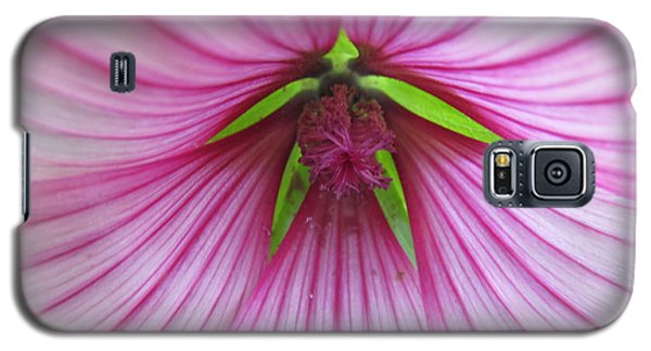 Galaxy S5 Case featuring the photograph Pretty In Pink by Tina M Wenger