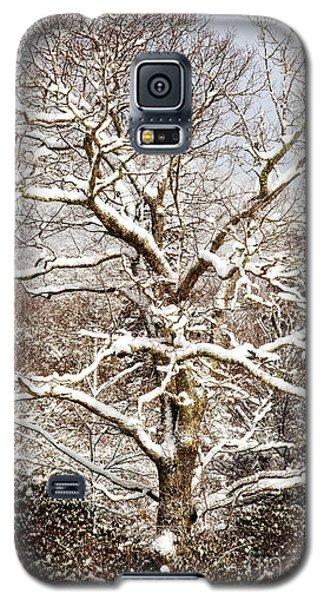 Pretty In White Galaxy S5 Case