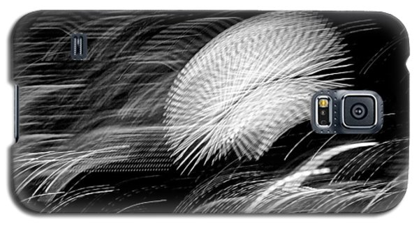 Galaxy S5 Case featuring the photograph Pretty Little Cosmo - 6 by Larry Knipfing