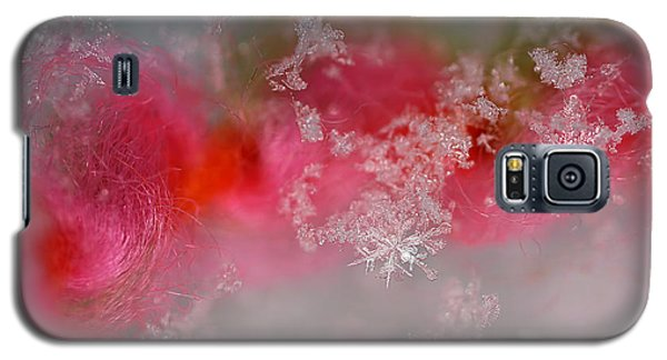 Galaxy S5 Case featuring the photograph Pretty Little Snowflakes by Lauren Radke