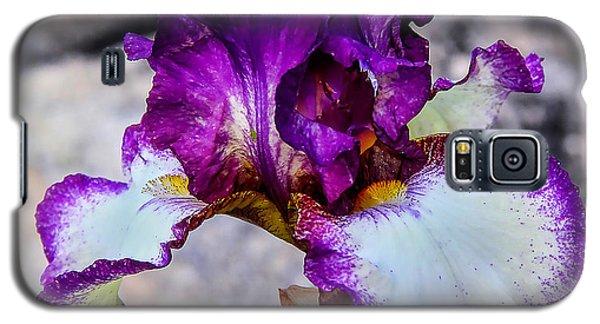 Pretty N Purple Galaxy S5 Case