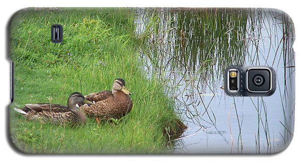 Mated Pair Of Ducks Galaxy S5 Case