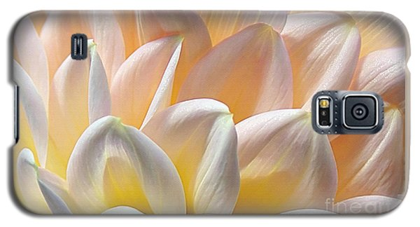 Pretty Pastel Petal Patterns Galaxy S5 Case