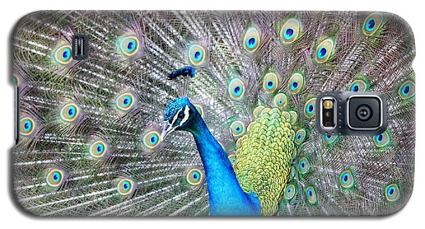 Galaxy S5 Case featuring the photograph Pretty Peacock by Elizabeth Budd