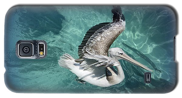 Galaxy S5 Case featuring the photograph Pretty Pelican by Pennie  McCracken