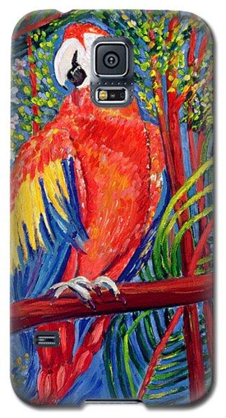 Macaw Galaxy S5 Case - Pretty Polly by Patricia Eyre