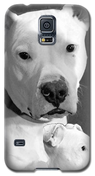 Galaxy S5 Case featuring the photograph Prettyboy by Robert McCubbin
