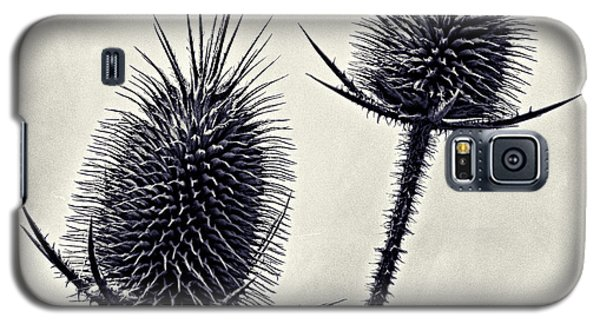 Prickly Galaxy S5 Case by John Hansen