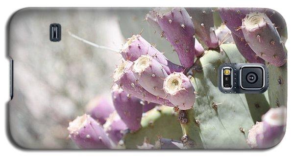 Prickly Pear Cacti Galaxy S5 Case by Andrea Hazel Ihlefeld