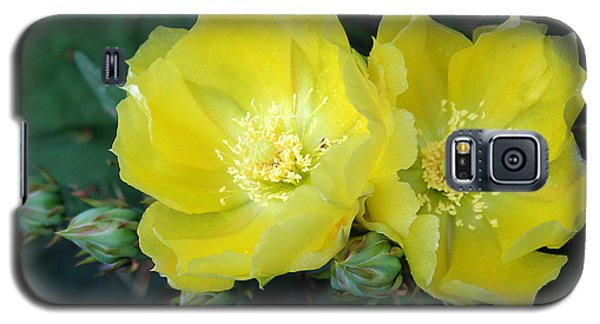 Prickly Pear Cactus Flowers No. 3 Galaxy S5 Case