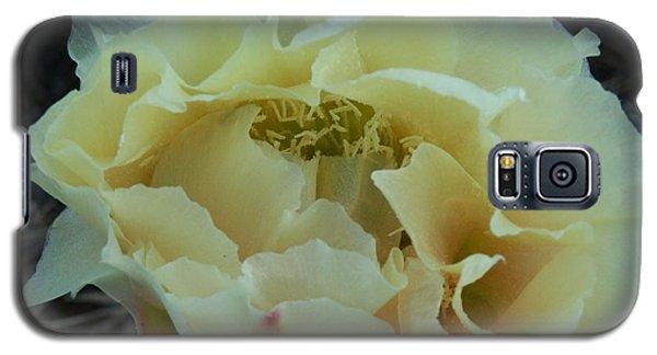 Prickly Pear Galaxy S5 Case