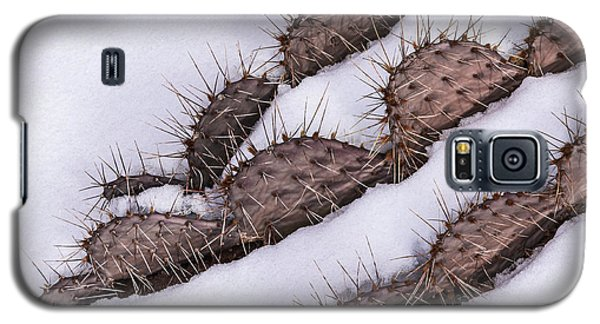 Prickly Pear On Ice Galaxy S5 Case