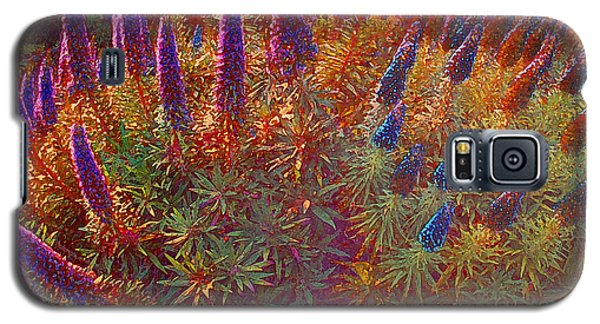 Galaxy S5 Case featuring the photograph Pride Of Madeira by David Klaboe