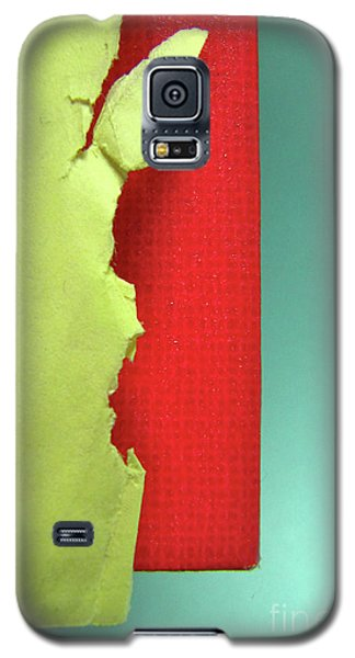 Galaxy S5 Case featuring the photograph Primary by CML Brown