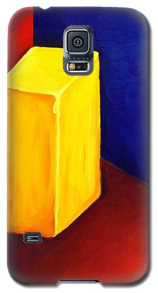Primary Colors Galaxy S5 Case by Brigitte Emme