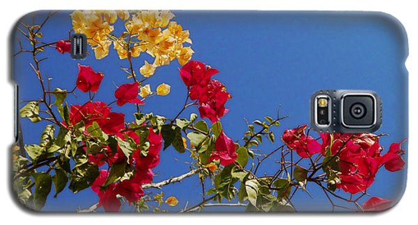 Galaxy S5 Case featuring the photograph Primary Colors by Ginny Schmidt
