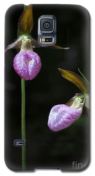 Prince Edward Island Lady Slippers Galaxy S5 Case by Verena Matthew