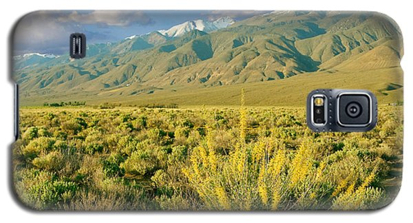 Princes Plume And White Mountains - Owens Valley California Galaxy S5 Case