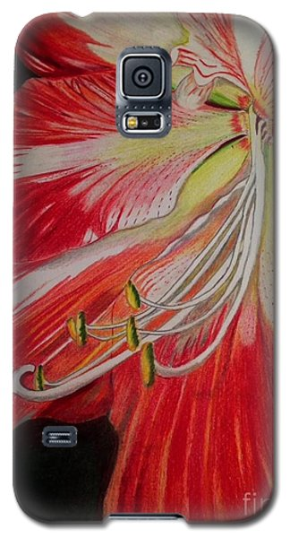 Galaxy S5 Case featuring the photograph Prismacolor Amaryllis by Brigitte Emme