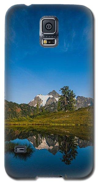 Pristine Galaxy S5 Case