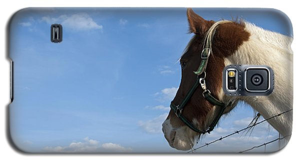 Galaxy S5 Case featuring the photograph Profile Of A Horse by Charles Beeler